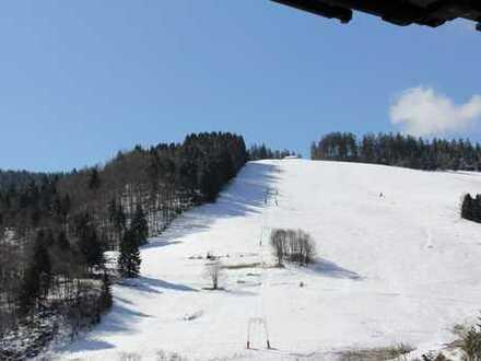 Schöne, renovierte und möblierte Ferienwohnung im Herzen vom Schwarzwald