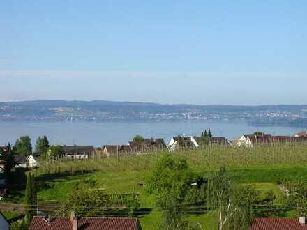 Zeitvermietung: Möbilierte ansprechende 2-Zimmer-Wohnung mit Balkon und EBK in Meersburg