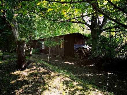 Großes Freizeitgrundstück inkl. Scheune und Outdoor Überdachung