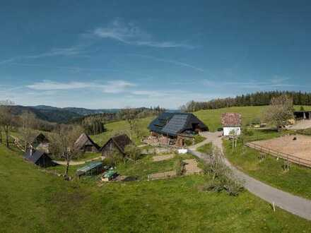 Bauernhaus/Ferienhaus im Schwarzwald längerfristig zu vermieten