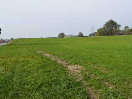 2 große Wiesen mit ca. 7,5 ha gut anzufahren in Engelitz, auch gut als Ausgleichsfläche geeignet