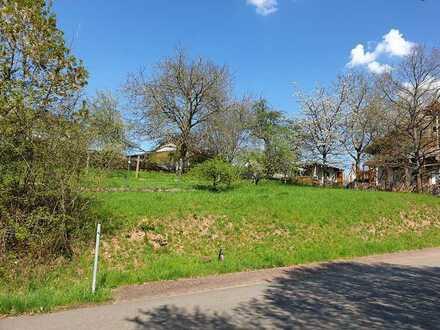 Sonniger Bauplatz in der Südwestpfalz