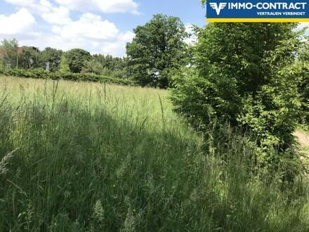 Wunderschönes Grundstück im Wienerwald zur Tierhaltung!