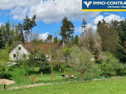 Bauernhof in Streusiedlungslage (Einzellagecharakter), landwirtschaftlich arrondierter Grund
