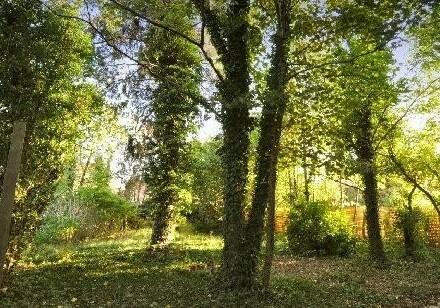 Villa mit historischem Charme - Uneinsehbaren idyllischem Garten in absoluter Ruhelage - Sanierungsbedürftig!