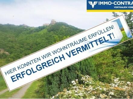 Traumlage mit Ausblick auf Burg Aggstein