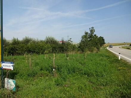 Betriebsbaugebiet in unmittelbarer Autobahnnähe