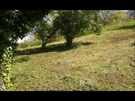 Garten, Grundstück -zu Verkaufen- Weinstadt Beutelsbach