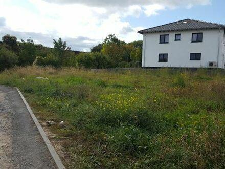 Grünstadt Bauplatz 444qm Didier-Gelände