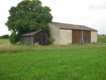 Sonnige Wiese 4350 m2 mit Halle (für Pferde, Maschinen, Lager)