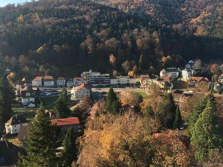 Penthousewohnung in Bad Herrenalb