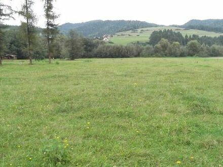 Grundstück Kreis Zakopane Hohe Tatra am Fluss Dunajec ca 10000 qm2
