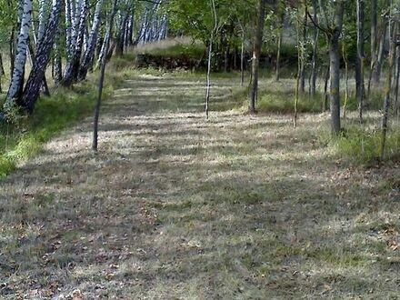 Ruhiges Wiesen Grundstück, Landwirtschaftsfläche im Ochsental.