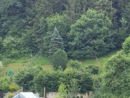 Liebhaber Gartengrundstück in Rottenburg