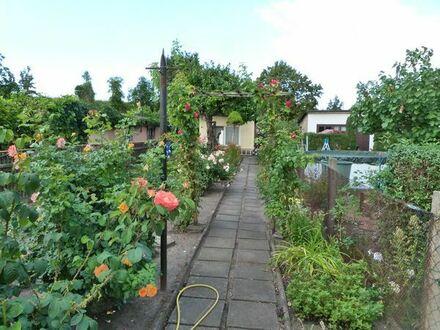 Biete schönen Pachtgarten