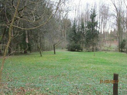 Wiesen-/Waldgrundstück 18.5 ar am Waldrand