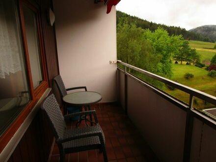 Wunderschönes Appartement im Schwarzwald mit Talblick-Balkon und EBK (460 EUR Warmmiete)