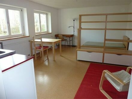 Schöne 1-Zimmer-Wohnung zu vermieten
