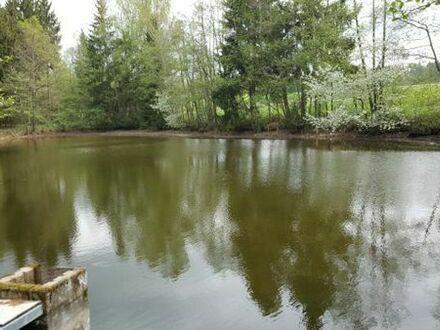 Teichanlage an der B25 gelegen mit 7 Weier zu verkaufen