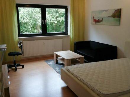 Vollmöbliertes 1 Zi mmer Appartement mit Balkon in Lemberg