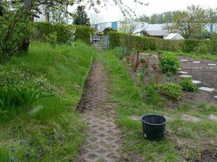 Großer Garten mit Laube