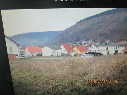 Bauplatz in Neckargemünd-Kleingemünd 13 Km bis Heidelberg