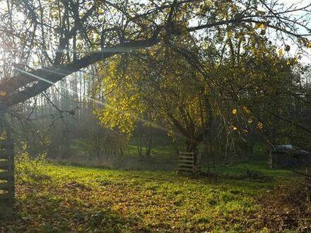 Freizeitgrundstück in Buchbach