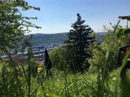 Gartengrundstück (ES) mit herrlicher Aussicht ins Neckartal