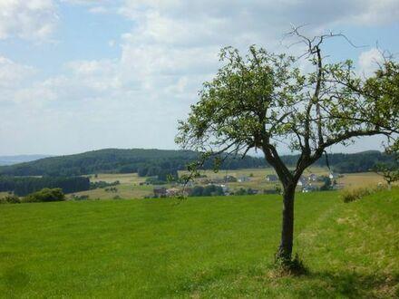 ...baureifes Bau-Grundstück zu verkaufen, ca. 600 qm