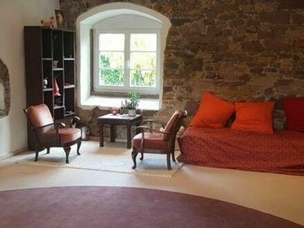 Grosszügiger Besprechungsraum, knapp 50 m2, mit Atmosphäre zu vermieten