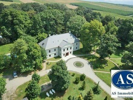 In 3500 Miskolc (Ungarn) Schloss-Hotel mit Pferdestall auf 35000 qm Land zu verkaufen!