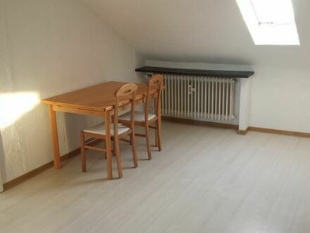 Frisch renovierte 3-Zimmerwohnung mit Garage und Gartenanteil