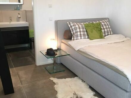Furnished new all-incl Apartment, near train station, EUR 895/month, 50 mbit/s