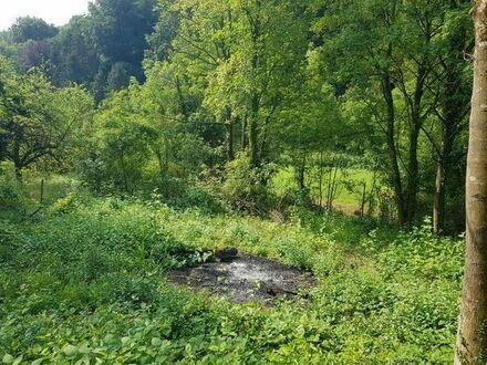 Garten / Freizeit / Acker / Grundstück in Weingarten (Baden)