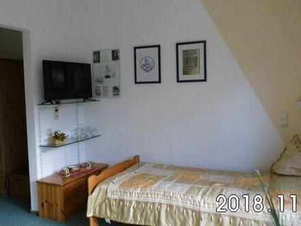 möblierte sonnige 1-Raum-Wohnung mit Nebengelass und Mietgarage ab 1.Nov.2018
