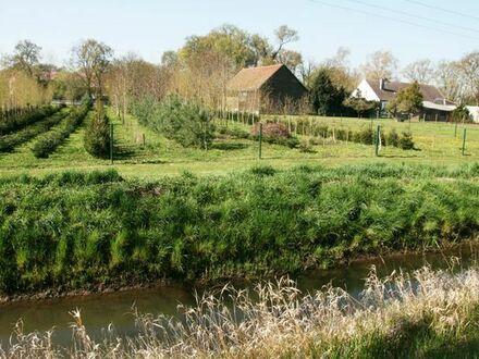 Ackerland Wiese Wald Stall Scheune Haus im Oderbruch