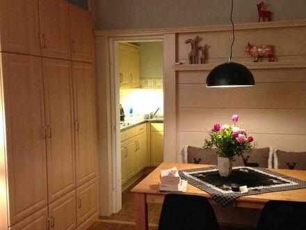 Komplett eingerichtet - 1-Zimmer-Küche-Bad-Terrasse-EG - ab 01.09.2019