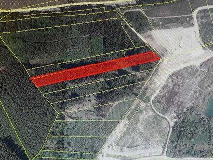 Waldgrundstück 8694 qm nähe Fürstenfeldbruck