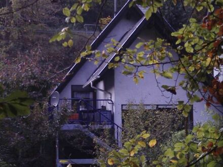 Einfamilienhaus im Pfälzer Wald, Altleiningen-Höningen