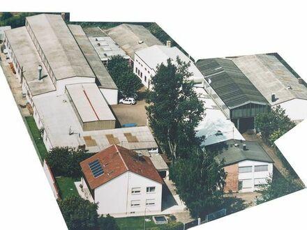Gewerbeimmobilie im Gewerbegebiet Neu-Ulm - Provisionsfrei im Alleinauftrag