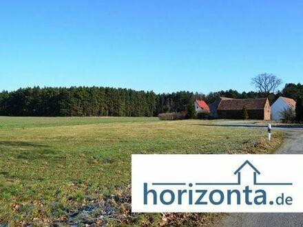 Traumplatz für Haus, Bauernhof, Gewerbe o. Pflegeheim, Größe von 1000 bis 3000m²