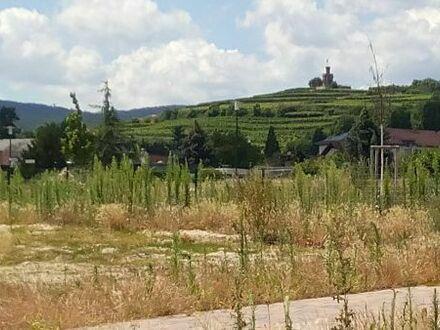 Bad Dürkheim - Fronhof II, 2 Baugrundstücke, zusammen oder einzeln !