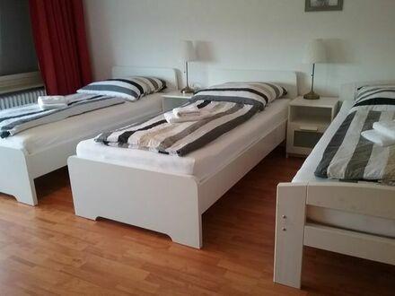 Monteurzimmer / Ferienwohnung Sinsheim Haus Nr. 4