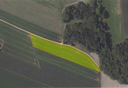 Grundstück Landkreis Starnberg