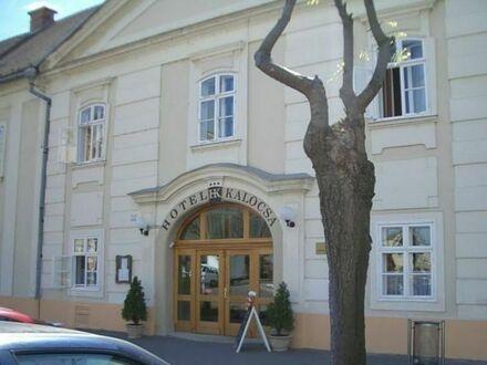 Wellness Villa Kalocsa