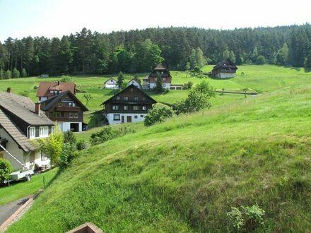 Wohnen auf Zeit Nordschwarzwald - Baiersbronn