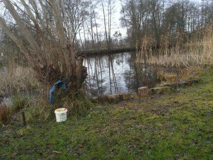 Nachpächter für kleines Anglerparadies auf Naturgrundstück direkt an der Havel in Zehdenick gesucht!