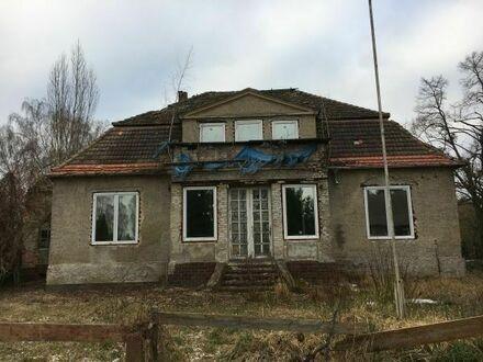 Einfamilienhaus + Villa also 2 Häuser inkl. 4.452 qm Baugrundstück im Oderbruch Letschin Brandenburg