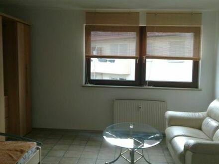 1-Zimmer-Wohnung direkt an d. GSO Techn.Hochschule und Wöhrdersee