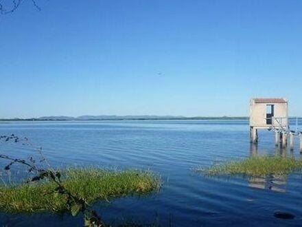 Permakulturfarm in Brasilien, direkt am See für virtuelle Nomaden und Selbstversorger zu verkaufen!